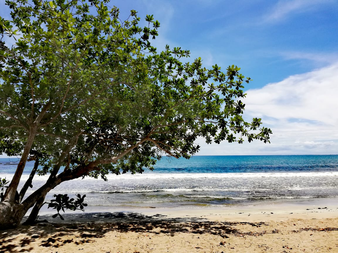 Cahuita - mar caribe